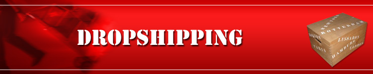 How Dropshipping Helps A Business at Dropshipping